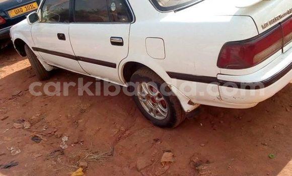 Buy Used Toyota Corona White Car in Kampala in Uganda