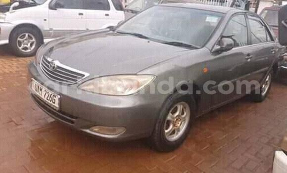 Buy Used Toyota Camry Other Car in Kampala in Uganda