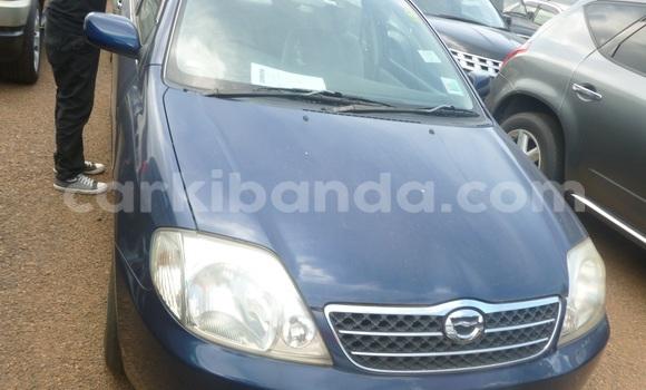 Buy New Toyota Corolla Blue Car in Arua in Uganda