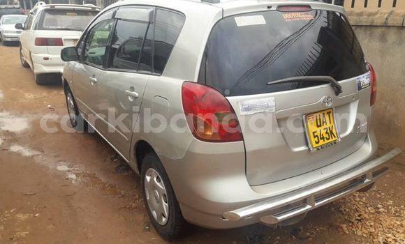 Buy Used Toyota Spacio Silver Car in Kampala in Uganda