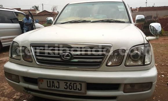 Buy Used Lexus LX White Car in Kampala in Uganda