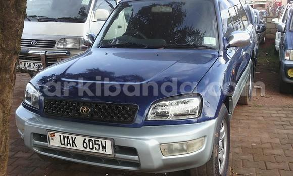 Buy Used Toyota RAV4 Blue Car in Arua in Uganda