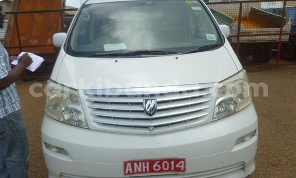 Buy New Toyota Alphard White Car in Arua in Uganda