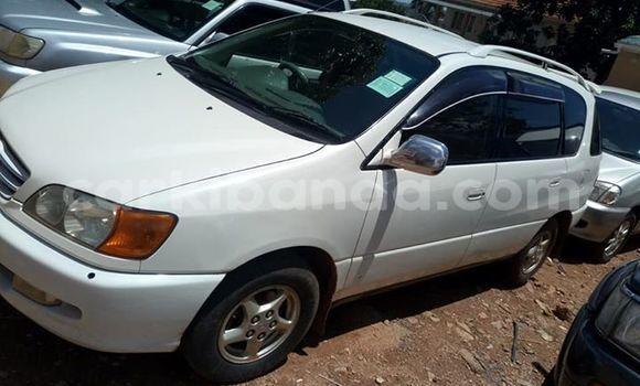 Buy Used Toyota Ipsum White Car in Kampala in Uganda