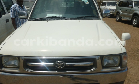 Buy New Toyota Hilux White Car in Arua in Uganda