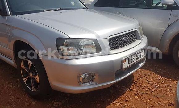 Buy Used Subaru Forester Silver Car in Kampala in Uganda