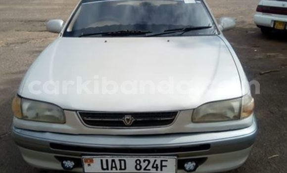 Buy Used Toyota Corolla White Car in Kampala in Uganda