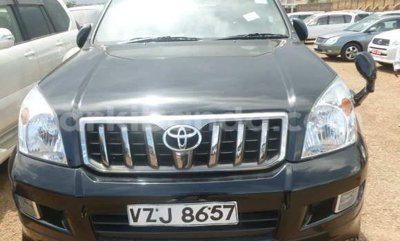 Buy New Toyota Prado Black Car in Arua in Uganda
