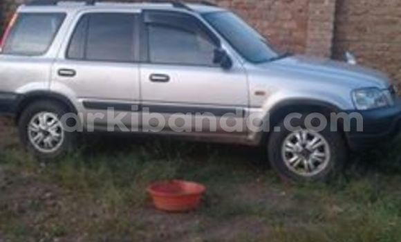 Buy Used Honda CR–V Other Car in Arua in Uganda