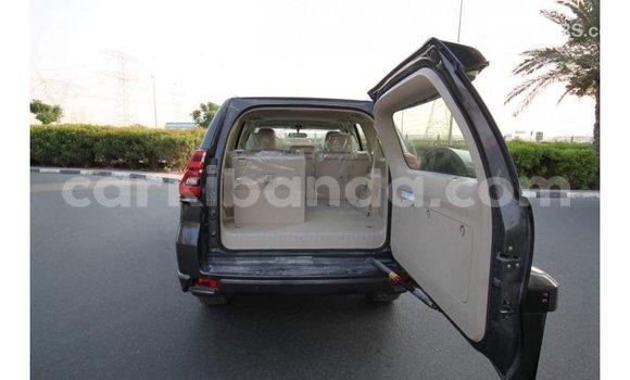 Buy Import Toyota Prado Other Car in Import - Dubai in Uganda