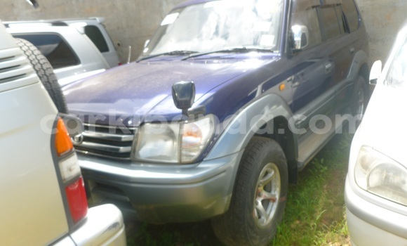 Buy Used Toyota Land Cruiser Prado Blue Car in Arua in Uganda
