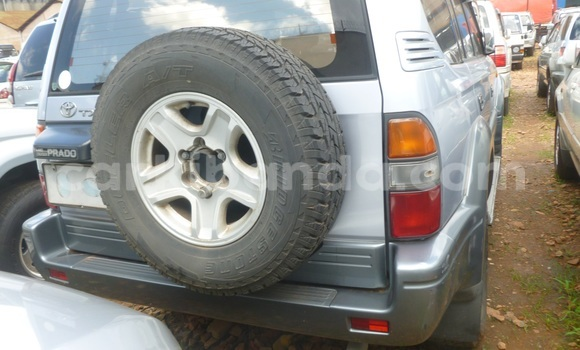 Buy Used Toyota Land Cruiser Prado Other Car in Arua in Uganda