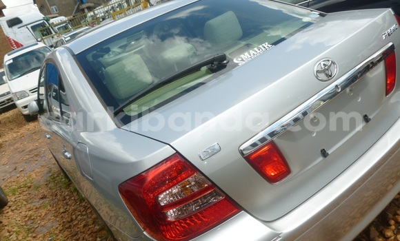 Buy New Toyota Premio Silver Car in Arua in Uganda
