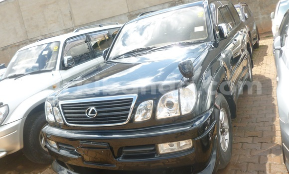Buy Used Toyota Land Cruiser Black Car in Arua in Uganda