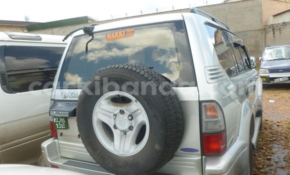 Buy Used Toyota Harrier White Car in Arua in Uganda