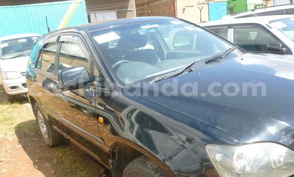 Buy Used Toyota Harrier Black Car in Arua in Uganda