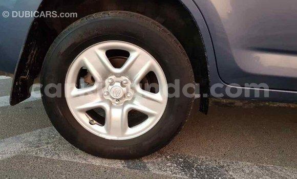 Buy Import Toyota RAV4 Blue Car in Import - Dubai in Uganda