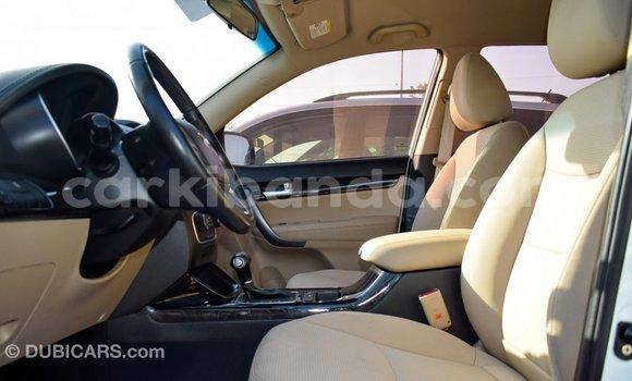 Buy Import Kia Sorento White Car in Import - Dubai in Uganda