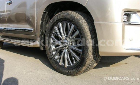 Buy Import Toyota Land Cruiser Other Car in Import - Dubai in Uganda