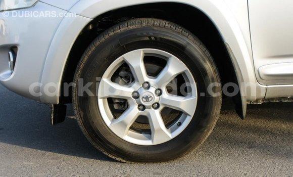 Buy Import Toyota RAV4 Other Car in Import - Dubai in Uganda