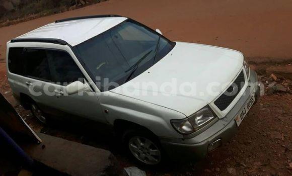 Gura Yakoze Subaru Forester White Imodoka i Kampala mu Uganda
