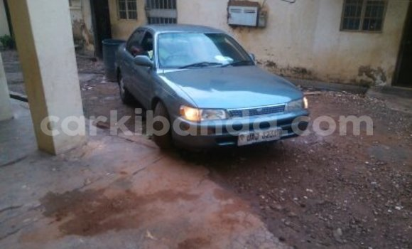 Buy Used Toyota Corolla Other Car in Arua in Uganda