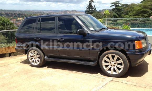 Buy Used Rover 600 Black Car in Arua in Uganda