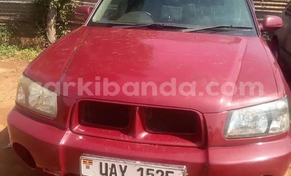 Buy Used Subaru Forester Red Car in Kampala in Uganda