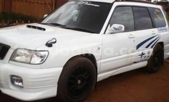 Buy Used Subaru Outback White Car in Arua in Uganda