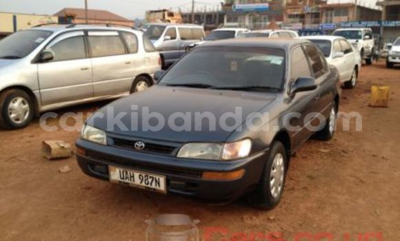 Buy Used Toyota Corona Black Car in Arua in Uganda