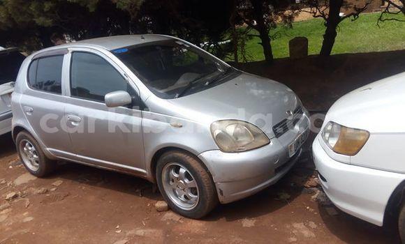 Buy Used Toyota Vitz Silver Car in Kampala in Uganda