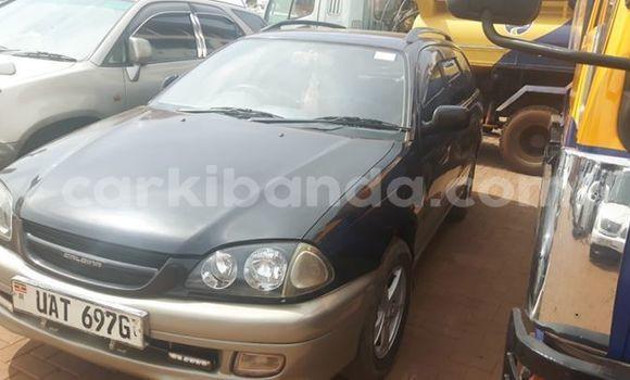 Buy Used Toyota Caldina Other Car in Kampala in Uganda