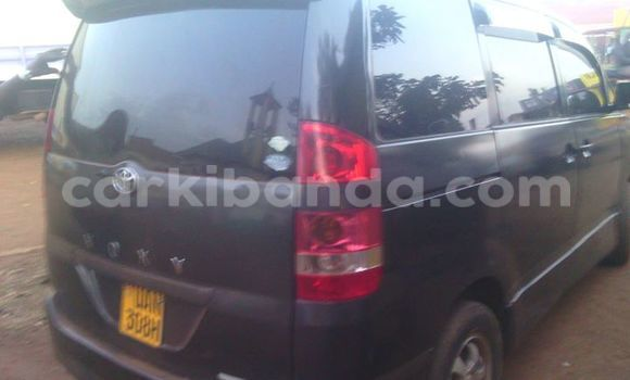 Buy Used Toyota 4Runner Black Car in Arua in Uganda