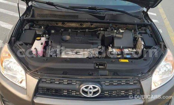 Buy Import Toyota 4Runner Brown Car in Import - Dubai in Uganda