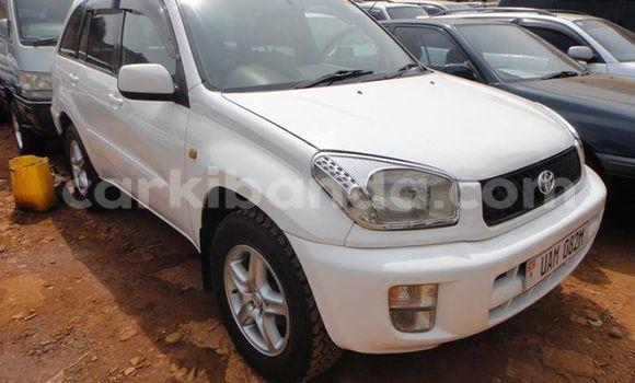 Buy Used Toyota 4Runner White Car in Arua in Uganda