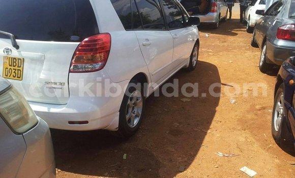 Buy Used Toyota Spacio White Car in Kampala in Uganda