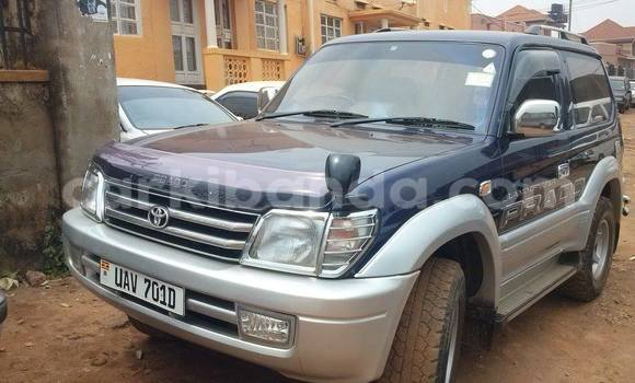 Buy Used Toyota Prado Blue Car in Arua in Uganda