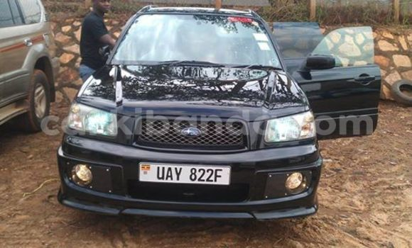 Buy Used Subaru Outback Black Car in Arua in Uganda
