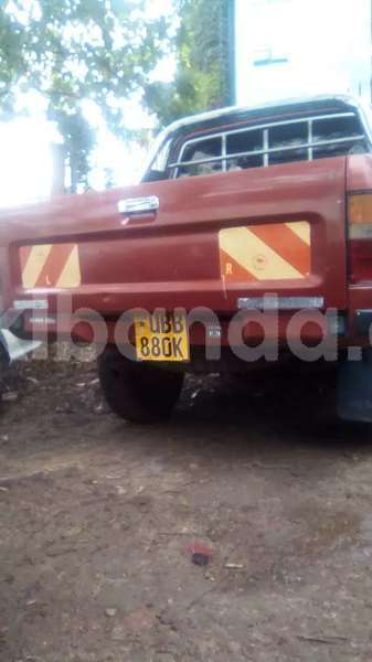 Big with watermark pickup2