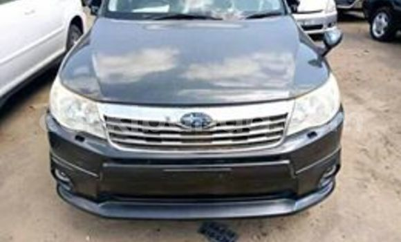 Acheter Occasion Voiture Subaru Forester Noir à Kampala, Ouganda