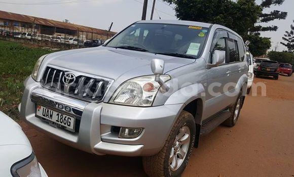 Buy Used Toyota Prado Silver Car in Arua in Uganda