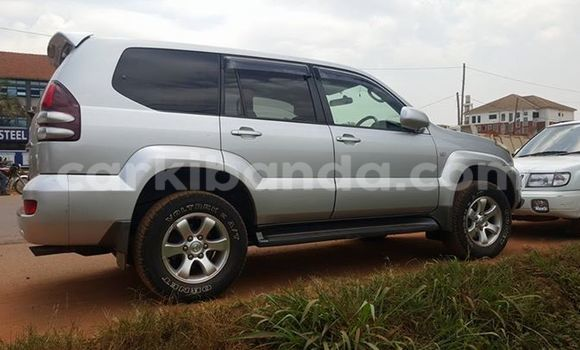 Buy Used Toyota Prado Silver Car in Arua in Uganda