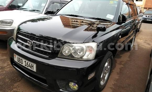 Buy Used Toyota Kluger Black Car in Kampala in Uganda