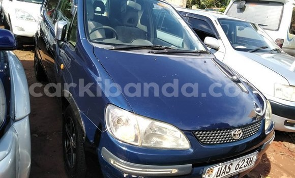Buy Used Toyota Corolla Spacio Blue Car in Kampala in Uganda
