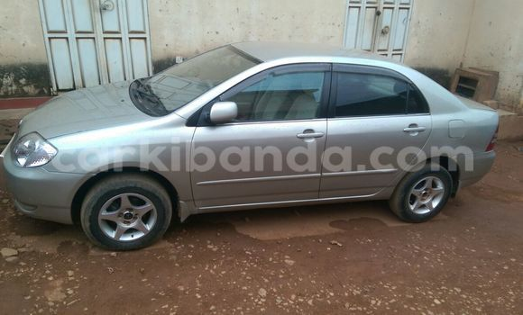 Buy Used Toyota Corolla Car in Arua in Uganda
