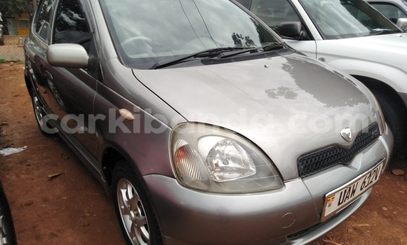 Buy Used Toyota Vitz Other Car in Kampala in Uganda
