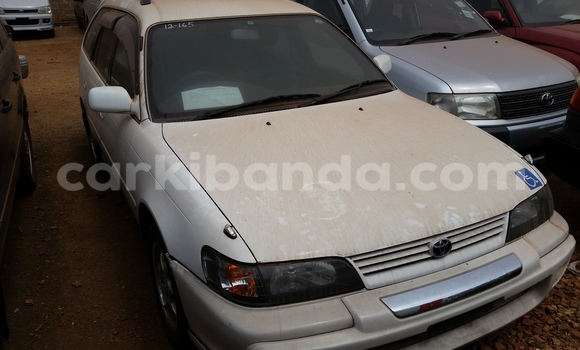 Buy Used Toyota Corolla White Car in Arua in Uganda