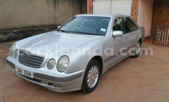 Buy Used Mercedes Benz E–Class Silver Car in Arua in Uganda
