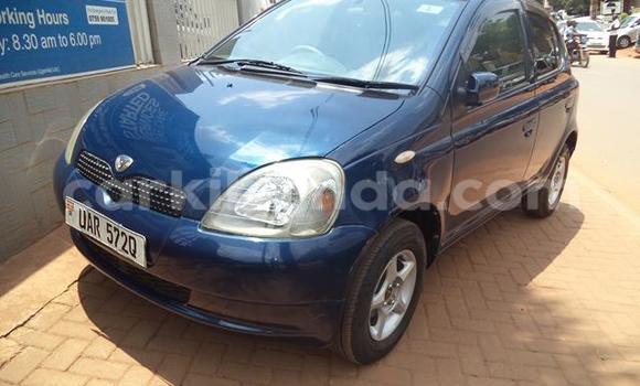 Buy Used Toyota Vitz Blue Car in Arua in Uganda
