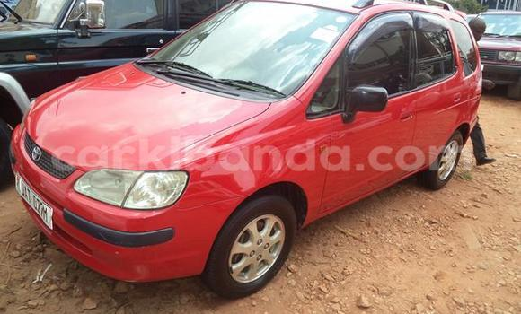 Buy Used Toyota Spacio Red Car in Arua in Uganda
